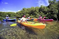 Kayaking through mangroves at Lac Bay (Photo: Tourist Corporation Bonaire)